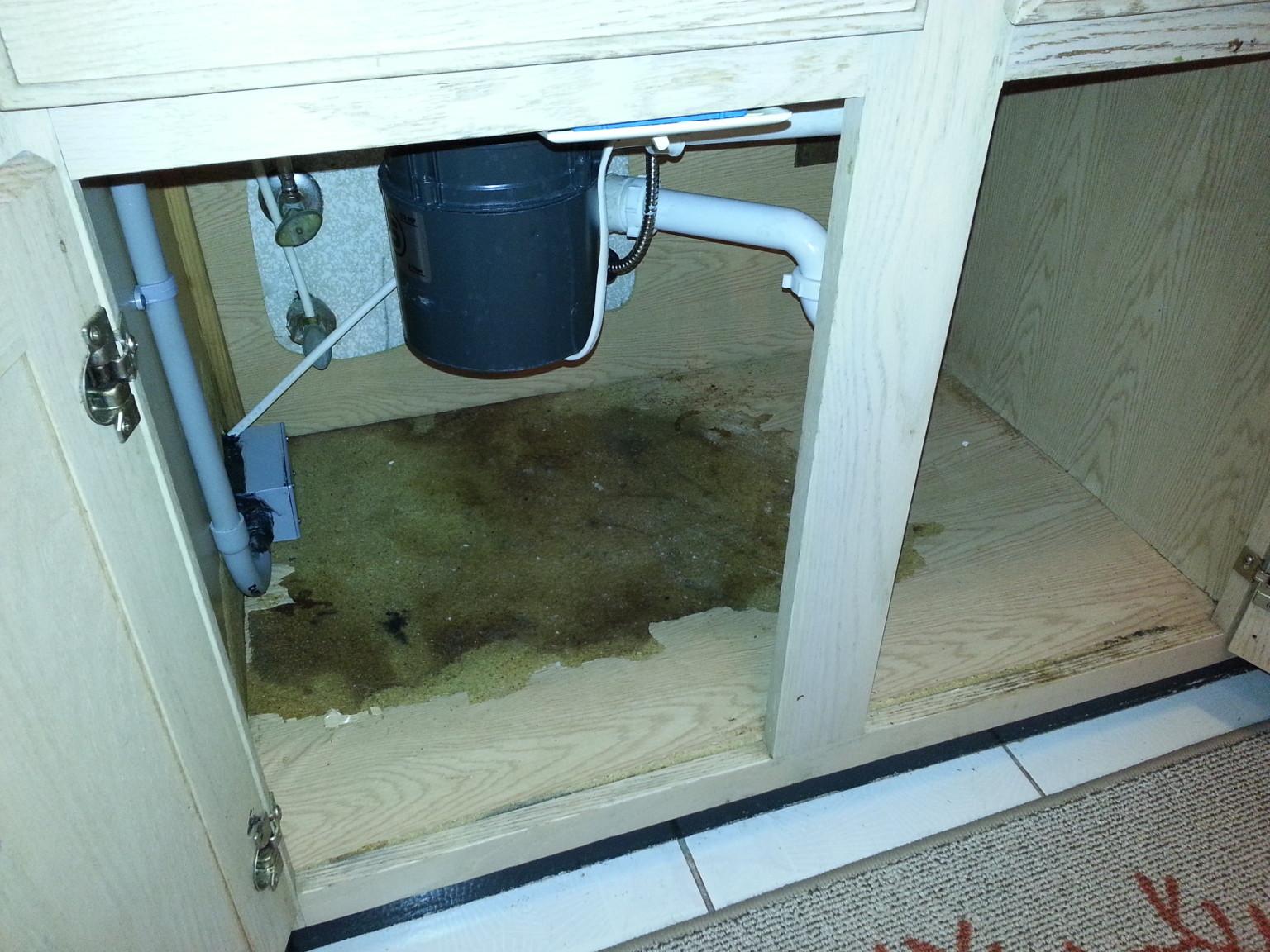 Water Damage: Water Damage Under Kitchen Sink