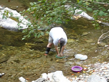 Panning forgold on the Tellico River in Tennessee